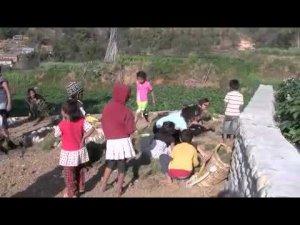 Bhaktapur SSCH children March 2011.m4v